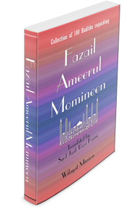 Fazail Ameerul Momineen (asws) English translation now available on Wilayat Mission